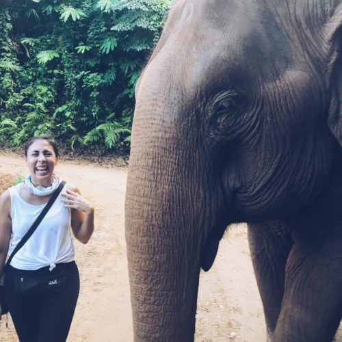 Amy standing next to an Elephant at a Nature Park in Chiang Mai